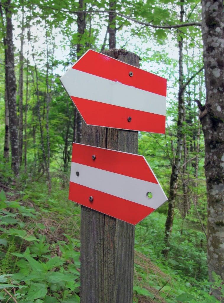 שלטי כיוון ביער אוסטרי